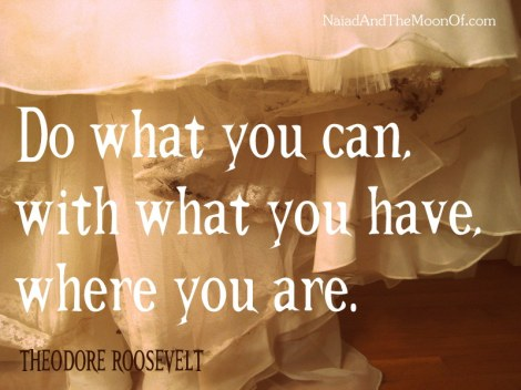 Do what you can quote by Roosevelt