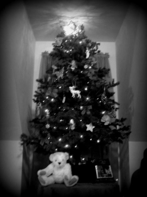 Wild Christmas Tree 1
