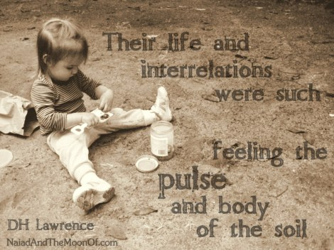 """DH Lawrence Quote """"feeling the pulse and body of the soil"""""""