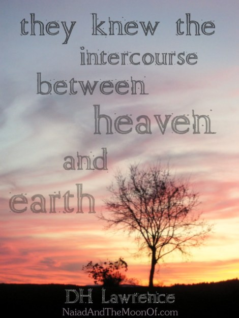 """DH Lawrence Quote """"intercourse between heaven and earth"""""""